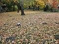 Zeitz Michaelisfriedhof Bombenopfer.JPG
