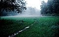 Zelenograd poljana za bashnjami na ploschadi Junosti 01.jpg