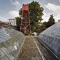 Zicht op watertoren, tussen kassen door - Hoek van Holland - 20405378 - RCE.jpg