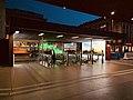 Zurich Hauptbahnhof (Ank Kumar) 17.jpg