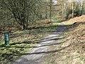 'Footpath only' to Moel Famau - geograph.org.uk - 1193331.jpg