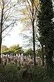 Židovský cintorín vo Vrbovom.JPG