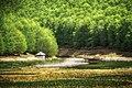 Όρος Βέρνο 2.jpg