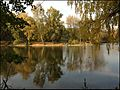 Ботанический сад - panoramio (18).jpg