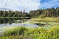 Быковщинское озеро осеннее.jpg