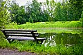 Дендропарк Ульяновский, скамья у пруда.jpg