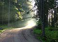 Дорога на скит.jpg