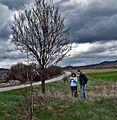 Егреците, 2414 Стефаново, Bulgaria - panoramio.jpg
