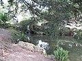 Парк бомон 3 - panoramio.jpg