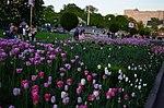 Парк имени Горького в Москве. Фото 31.jpg