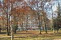 Парк санаторію Карпати2.JPG