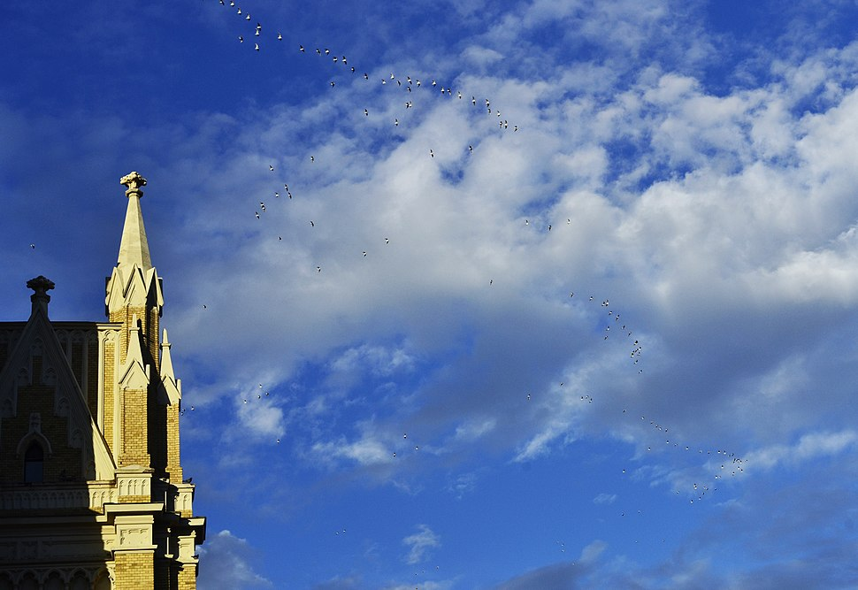 Црква, небо, голубови