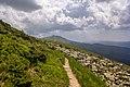 Чорногорський хребет. дорога до г.Говерла.jpg