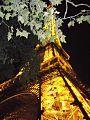 برج إيفل ليلا.jpg
