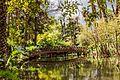 حديقة الأورمان –الجيزة -مصر.jpg