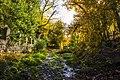 پاییزدر ایران-قاهان قم-Autumn in iran-qom 06.jpg