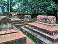 বাঘা মসজিদের সামনের মাজার.jpg