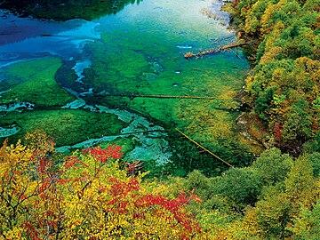 Jiuzhaigou Valley: The Five Flower Lake | The Five Flower ...