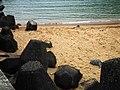 外木山海灘 Waimushan Beach - panoramio (1).jpg
