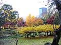 小石川植物園(2009.11.28撮影) - panoramio (4).jpg