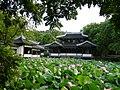 杭州.西湖-曲院风荷 - panoramio (5).jpg