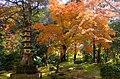 槇尾山西明寺 京都市右京区 Saimyōji temple 2013.11.21 - panoramio.jpg