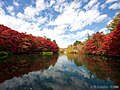 紅葉の雲場池 (Kumobaike pond in autumn) 26 Oct, 2014 - panoramio.jpg