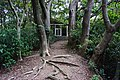 高峰植物園第一溫室 The First Greenhouse of Gaofeng Botanical Garden - panoramio.jpg