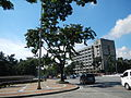 05957jfQuezon Memorial Authority Elliptical Road Quezon Cityfvf 02.JPG