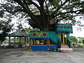 07359jfBagumbayan Roads Municipal Park Halls Victoria Llanera Nueva Ecijafvf 23.JPG