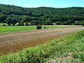 10 Landschaftsschutzgebiet bei Schelklingen.jpg