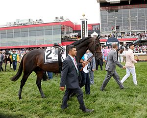 Cloud Computing (horse) - Cloud Computing prior to the Preakness