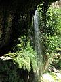166 Salt d'aigua del Tenes, Sant Miquel del Fai.JPG