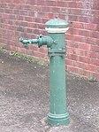 1740 - Rathmines Park, former RAAF Seaplane Base - One of several disused water hydrants scattered througout Rathmines Park (5054666b3).jpg