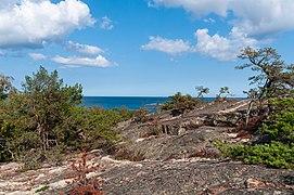 18-09-01-Schären westlich von Långbådan RRK7722.jpg