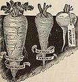 1898 (catalog) (1898) (20570322725).jpg