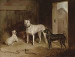 19th bulldog and two bullterriers.jpg