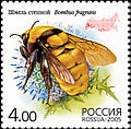 2005. Марка России stamp hi12612324824b2ce162991f2.jpg