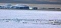 2007 Snow-Hill-Island Luyten-De-Hauwere-Emperor-Penguin-106.jpg