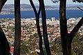 2011-365-340 Hobart Trees Spells City (6465237821).jpg