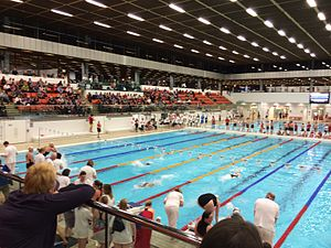 2014 Commonwealth Games - Royal Commonwealth Pool, Edinburgh hosted the Diving event