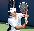 2014 US Open (Tennis) - Tournament - Igor Sijsling (15095467051).jpg