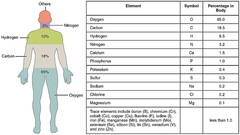 File:201 Elements of the Human Body-01.jpg