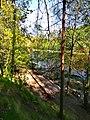 3390. Molodozhnoye. Chyornaya River.jpg