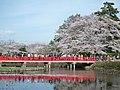 3 Chome-4 Ōta, Iwatsuki-ku, Saitama-shi, Saitama-ken 339-0052, Japan - panoramio.jpg