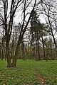 46-253-5008 Pidhirtsi Park RB 18.jpg
