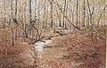 979 1990 Autumn Leaves Ontario p625.jpg