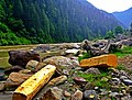 AJK Pakistan the river and the contents.jpg