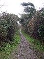 A Muddy Footpath - geograph.org.uk - 97780.jpg
