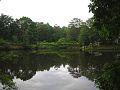 A View Across The Lake.jpg